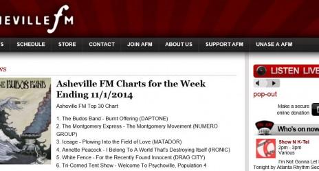 #6 Chart Listing Asheville NC Nov 2014